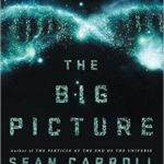 Book cover of 'The big picture' by Sean Carrol